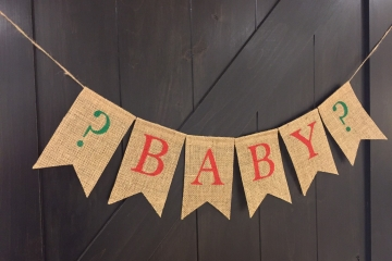 Holiday Baby Announcement Banner