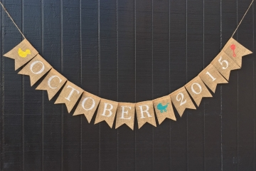 "Baby Shower Banner ""Customizable with Nursery Graphics"""